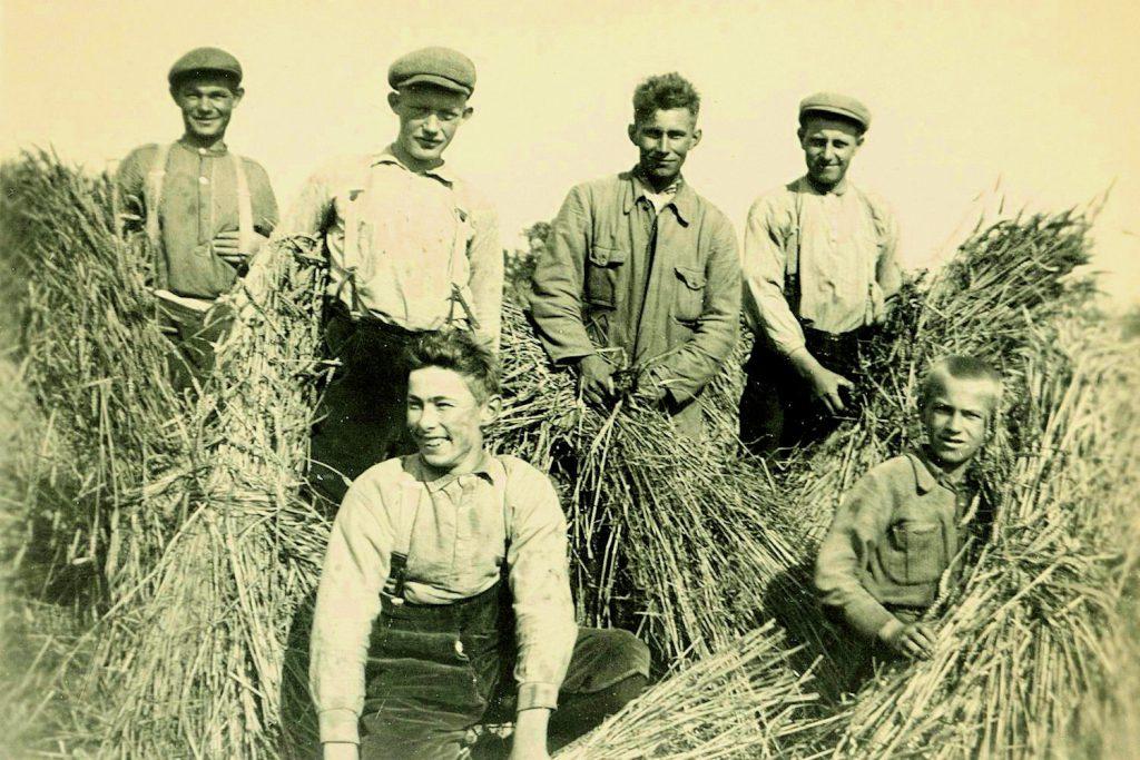 Farmers Drenthe